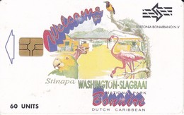 TARJETA DE BONAIRE DE UN LORO, FLAMENCO, ETC.(BIRD-PAJARO-PARROT) - Antilles (Netherlands)
