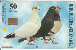 BOSNIA - Pigeons, Travnik(50 Units), 06/99, Used - Bosnia