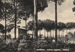 Ravenna - Punta Marina - Pineta - Ravenna