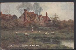 Buckinghamshire Postcard - A Farmhouse At Burnham Beeches   DC1802 - Buckinghamshire