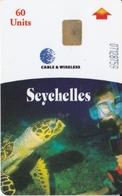 TARJETA DE LAS SEYCHELLES DE UNA TORTUGA-TURTLE - Sychelles