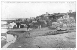 D33 -  Bassin D'Arcachon - ILE AUX OISEAUX - BARAQUES DE PECHEURS D'HUITRES - France