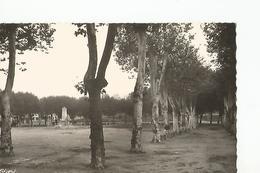01 Chatillon Sur Chalaronne La Place - Châtillon-sur-Chalaronne