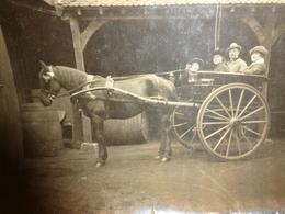 Photo Ancienne Cheval Avec Personnes Anonyme Dans La Charette  10.5 X 8 Cm Lieu A Identifier - Personnes Anonymes