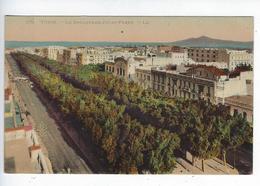 CPA Tunis Le Boulevard Jules Ferry 273 - Túnez