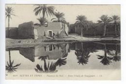CPA Algérie Scènes Et Types Paysage Du Sud Dans L'Oasis De Touggourt - Scene & Tipi