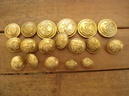 Lot Boutons De La Coloniale. - Buttons