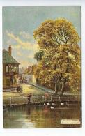 CPA Picturesque Surray Carshalton On The Wandle Oilette Serie Picturesque Counties 7723 - Birds