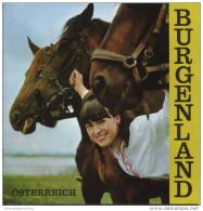 Burgenland 1967 - 16 Seiten Mit 11 Abbildungen - Relief-Bildkarte - Oesterreich