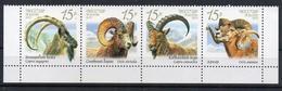 Russia 2013. Wild Goats And Rams.. Fauna.  Animals. MNH - Ungebraucht