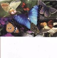 Afrique Du Sud,SOUTH AFRICA, Puzzle Butterfly, Papillon, Schmetterling - Zuid-Afrika