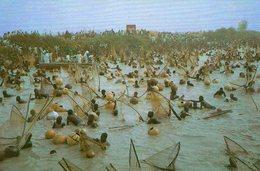 Argungu Fishing Festival, Sokot State - Nigeria