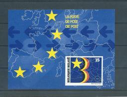 Belgique Belgïe LX 81 Feuillet Luxe Velletje - SUPERBE - RARE 850 Ex - COB 135 € - Luxevelletjes