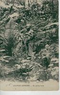 GRANDE COMORE En Pleine Forêt - Comores