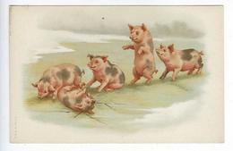 CPA Cochons Porcs Union Postale Universelle - Pigs