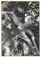 CPM - Photographie Michel Palomba - Photo Photographe - Garçon Nu Nude - Photographie