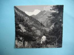 PHOTOGRAPHIE GRAND FORMAT - LA BIETSCHTAL  -  Rampe Sud  - 1968 -  12  X 13,5  Cms - Valais  -  SUISSE - Lieux