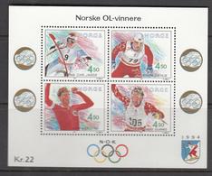 Norway MNH Michel Nr Block 19 From 1993 / Catw 7.00 EUR - Blokken & Velletjes