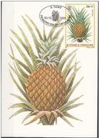 641a S. Tomé E Principe 1981  Frutta - Maximum Card - Ananas Sativus   Maxi - Frutta