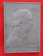 Médaille Plaque Claude Bernard Académie Française Sciences & Médecine Par A.Borrel 1913- 8x11cms-133gr - Francia