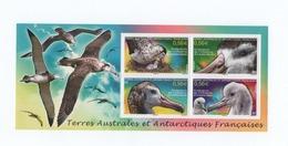 K22 TAAF Bloc Albatros N°24 2010 ** - Blocs-feuillets