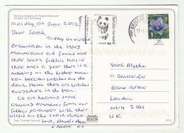 2012 GERMANY COVER Card SLOGAN Pmk WWF PANDA  To GB (postcard Witch) Stamps - W.W.F.