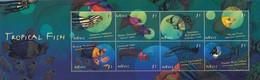 ST KITTS ET NEVIS -  BLOC - TROPICAL FISH  -  MNH** / TBS - St.Kitts-et-Nevis ( 1983-...)