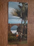 Ile De La Réunion - Environs De Saint Pierre, Sur La Route De Manapany Et De Saint Joseph - Format 10.2 X 21 Cm - La Réunion