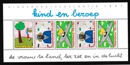 Nederland 1987 Blok Nr 30 **, Zeer Mooi Lot K826 - Francobolli