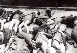 Allemagne Cologne Victimes Des Bombardements Britanniques Ancienne Photo De Presse 1943 - Guerre, Militaire