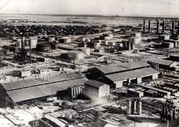 Proche Orient ? Rafinerie Petroliere ? WWII Ancienne Photo De Presse 1940's - War, Military