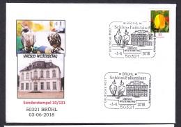 11.- GERMANY 2018 SPECIAL POSTMARK  FALCONRY - BRUHL - Águilas & Aves De Presa