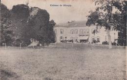 Château De Blicquy (Environs D'Ath ) - Ath
