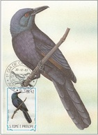 "746 S. Tomè E Principe 1983 Birds FDC Onychognatus Fulgidus "" Storno Del Castagno "" Passeri Maximum Card Maxi - Sparrows"
