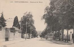 77 - FONTAINEBLEAU - Boulevard De Melun - Fontainebleau