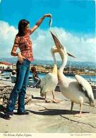 Animaux - Oiseaux - Chypre - The Pelicans - Paphos - Cyprus - Femme - Voir Scans Recto-Verso - Oiseaux