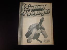 """"""" Sciences Et Voyages """" N° 543, 1930, """" Cette Tortue Marine Mangeant Une Banane Danse De Satisfaction """" - Livres, BD, Revues"""