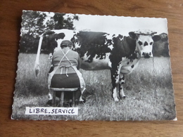 AGRICULTURE HUMOUR   @   LIBRE SERVICE 20 - PHOTO ET LEGENDE LOUIS BUFFIER  @ VUE RECTO/VERSO AVEC BORDS - Elevage