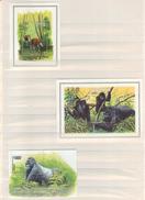 BUZIN / WWF / LES 3 BLOCS EMIS DENTELES / ZAIRE 1984 - RWANDA 1985 - RDC 2002 - 1985-.. Oiseaux (Buzin)