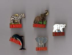 Lot De 5 Pin's Magazine / Vie Sauvage (2 Eléphants, Ours, Dauphin, Zébre) - Medias