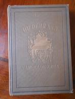 Hildebrand Camera Obscura 1924 (gk-8) - Boeken, Tijdschriften, Stripverhalen