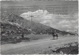 Corse Route De Calacuccia à Evisa Col De Vergio Circulee En 1957 - Autres Communes