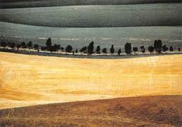 CPM - Photo Franco Fontana 1978 - Landscape - Paysage - Photographe Photographie - Photographie