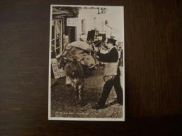 Angleterre - Carte Postale Ancienne De Clovelly: The Donkey Mail - Clovelly