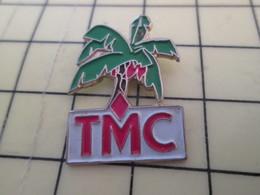 713E Pin's Pins : Rare Et Belle Qualité / MEDIAS : TELEVISION MONACO TMC PALMIER - Médias