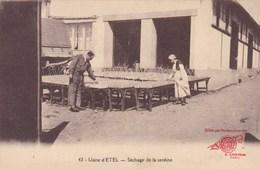 56 Etel, Usine D'Etel, Sêchage De La Sardine (pk49748) - Etel