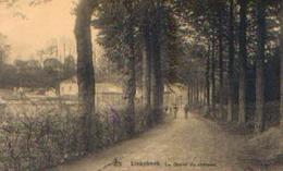 LINKEBEEK « La Drève Du Château » - Nels (1924) - Linkebeek