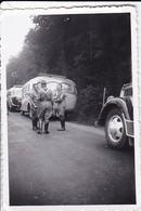 Foto Deutsche Soldaten Mit Autobussen - RAD Reichsarbeitsdienst - 2. WK - 8*5,5cm (35550) - Krieg, Militär