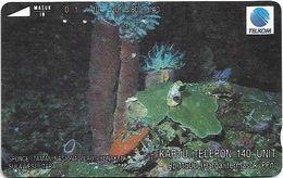 Indonesia - Telkom - Tamura - Spongs, Undersea Life - 140Units, 05.1993, 100.000ex, Used - Indonesia