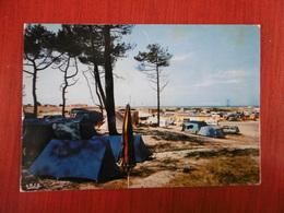 D 33 - Montalivet Les Bains - Le Camping - Other Municipalities